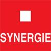 Synergie Italia Agenzia per il Lavoro S.p.a.