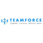 TEAMFORCE Labour Ltd