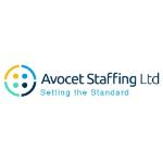Avocet Staffing