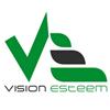 vision esteem