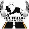 Buffalo Driver Training