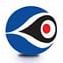 Top Choice Surveillance Limited