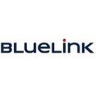 Bluelink Interenational CZ