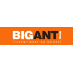 BIG ANT Group Recruitment Specialists