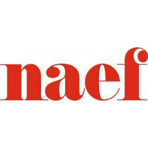 Naef Immobilier SA