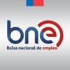 BADINOTTI NET SERVICES AYSEN SPA