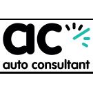 Auto Consultant