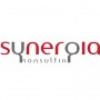 Synergia Konsulting